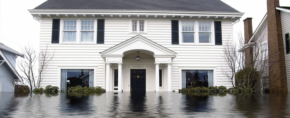 Interview with Greg Devine – Flood Insurance